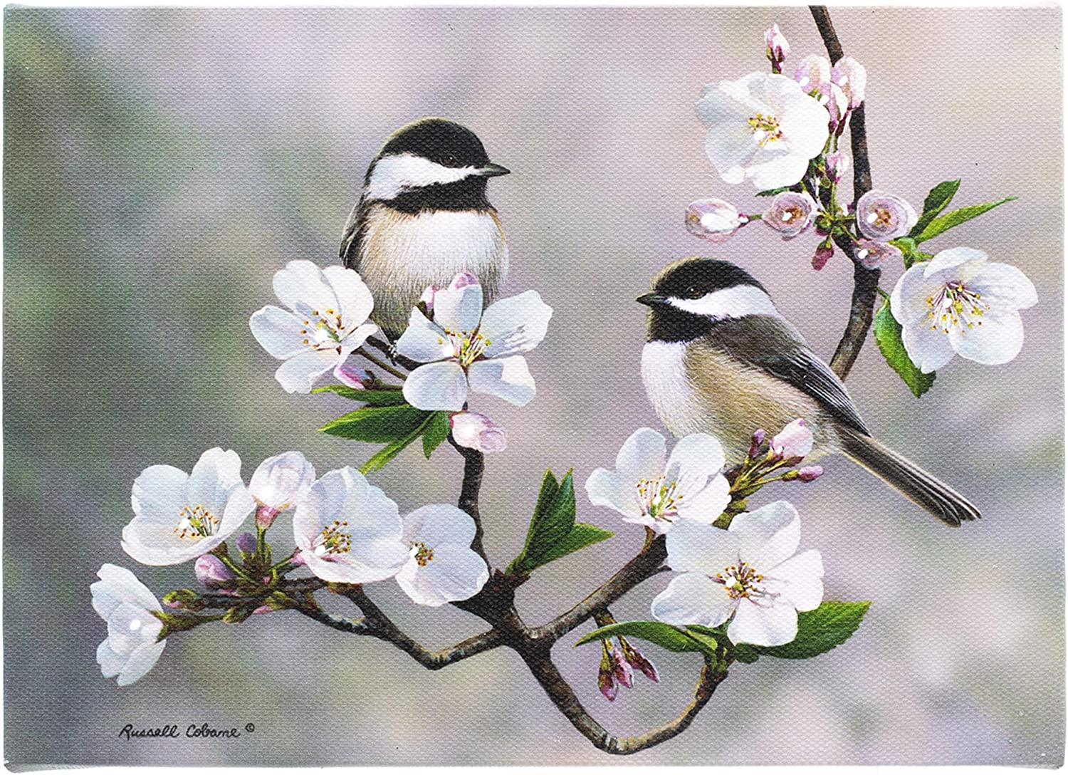 Wrens Perched on Apple Blossom Branches Light-Up Canvas Wall Art
