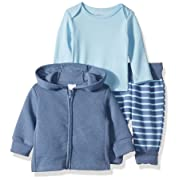 Hanes Ultimate Baby Flexy Jogger with Long Sleeve Crew and Fleece Hoodie, Blue Stripe, 0-6 Months