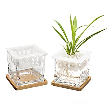 Amazon 4 Inch Square Clear Glass Vase Jars With Removable