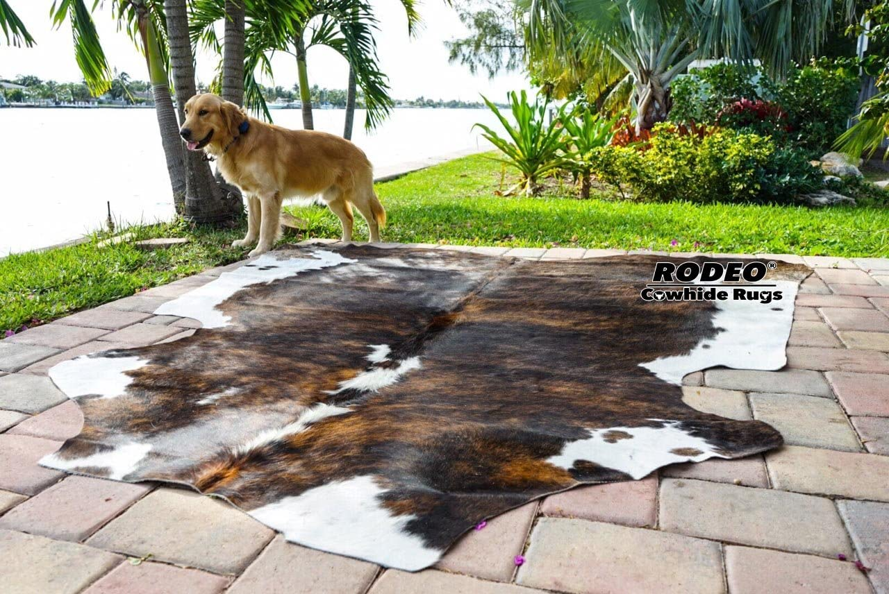 Amazing RODEO Cowhide Rug Hair on Skin cowhides Tricolor Brown Large Size