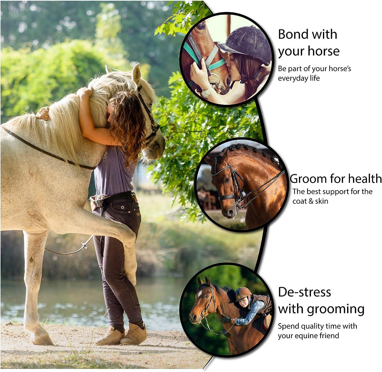 Sac de toilettage et lot de 8 brosses pour chevaux et poneys Kit de toilettage pour chevaux