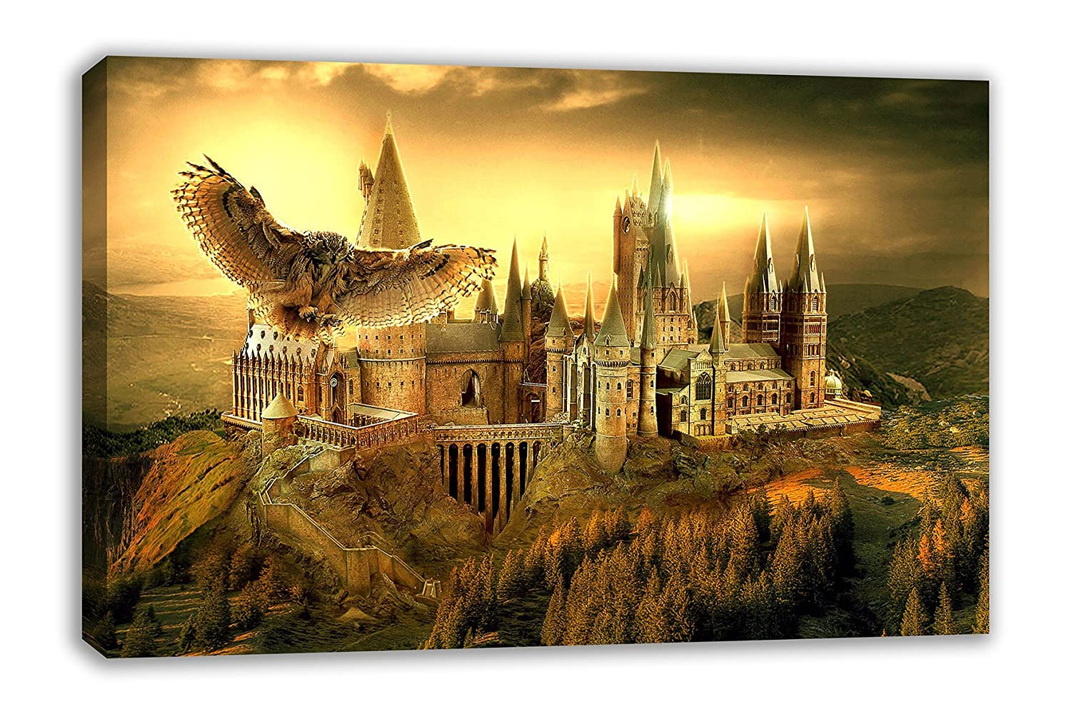 Amazon.com: HARRY POTTER HOGWARTS SCHOOL OF WITCHCRAFT AND WIZADRY ...