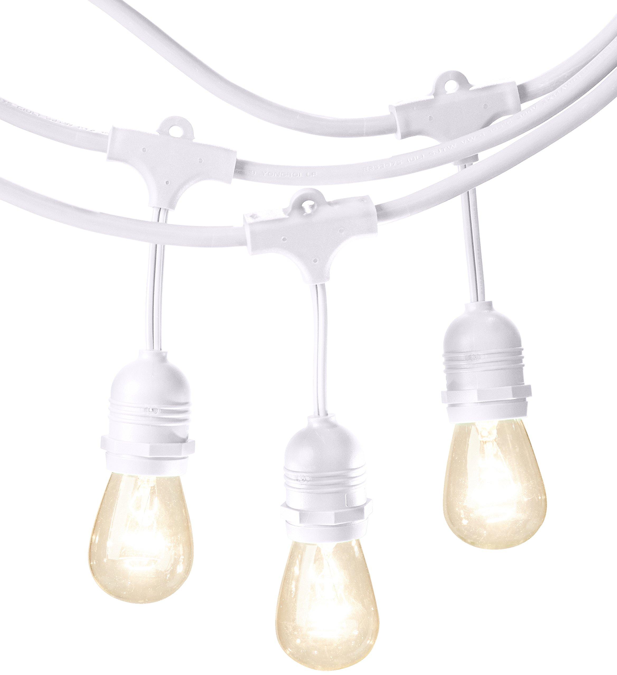 AmazonBasics Weatherproof Outdoor Patio String Lights With 15 S14 Globe Light Bulbs - 48 Foot, White