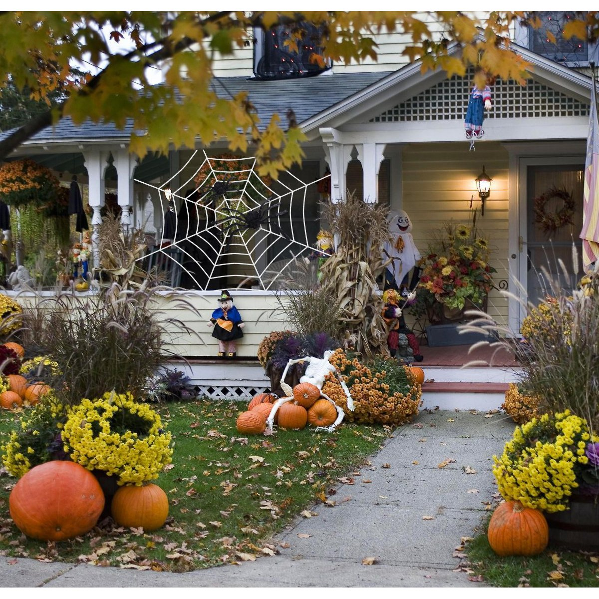 Amosfun Spider Web Decorations Indoor Spooky Spidery Spider Webbing Haunted  House Decor Decorazione di Halloween (Spider Web da 118 pollici + Ragno  nero da ... c7996ae17abd