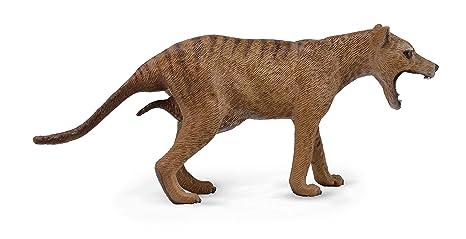 amazon com collecta wildlife thylacine tasmanian tiger female toy