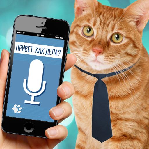 Cat to Human Translator Prank