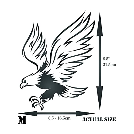 amazon eagle stencil 6 5 x 8 5 inch m reusable bird Bird of Prey Skull amazon eagle stencil 6 5 x 8 5 inch m reusable bird animal wildlife wall stencil template use on paper projects scrapbook journal walls floors