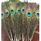 """SHUO Natural Peacock Feathers 10""""-12"""" with Eye Peacock Tail Feathers(25pack)"""