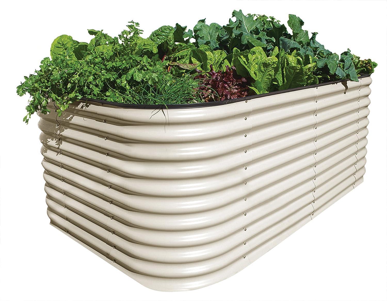 BEETVEGGIE Gemüse Hochbeet, 2200 x 1300 x 820 mm Bild