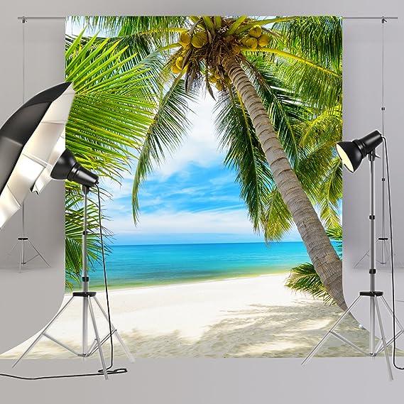 Tropischer Strand Palme Sommer Foto Hintergrund Für Kamera