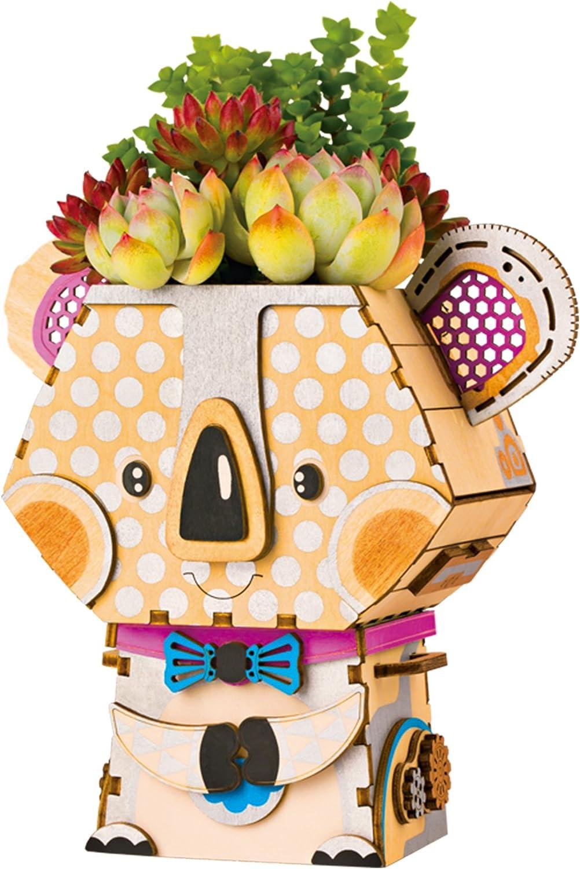 ROBOTIME Original Design DIY Wooden Cartoon Animal Shape Plastic Cactus Plant Pots with Hole and Tray for Succulent Plants Small Cactus Herbs Koala