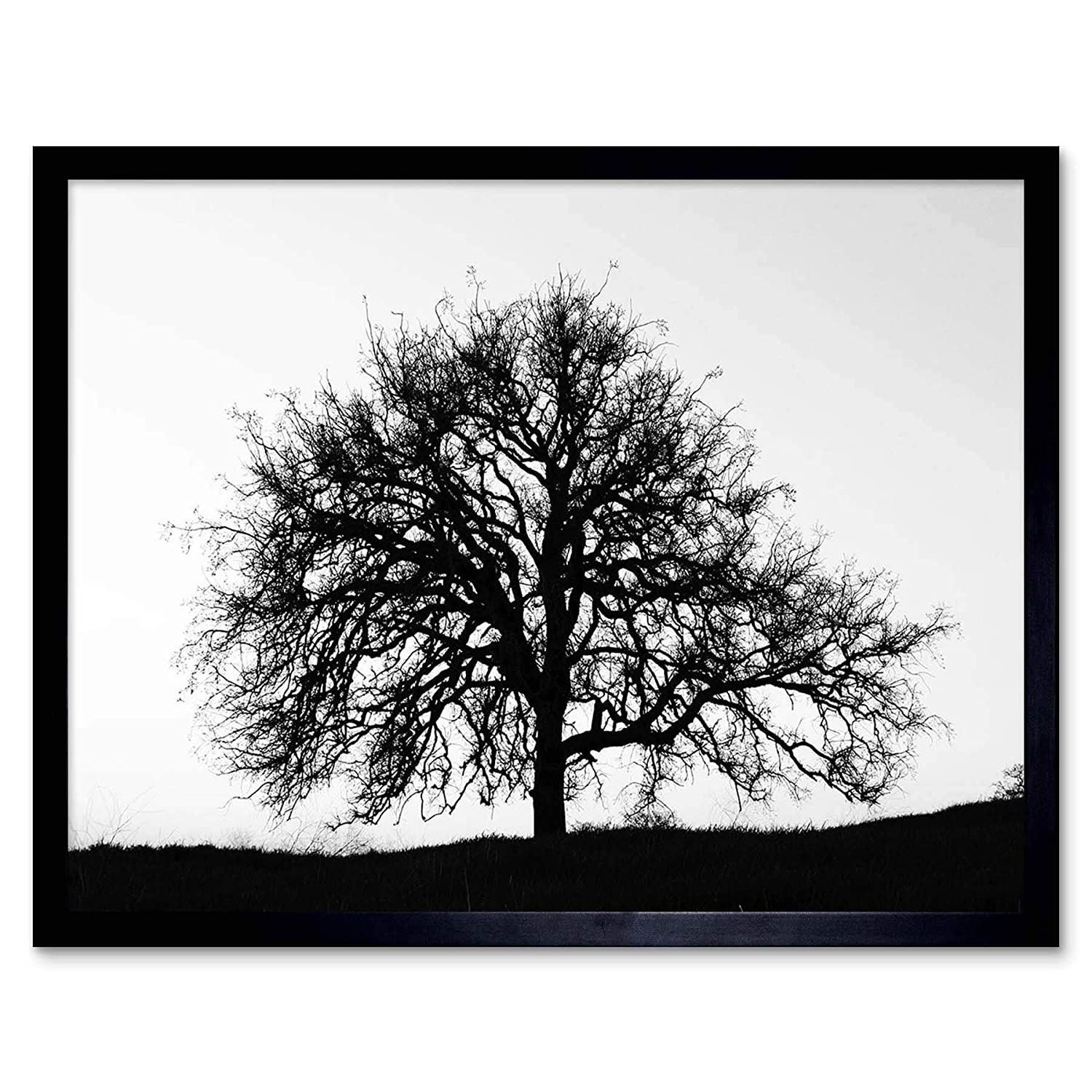 Amazon com wee blue coo photography tree silhouette black white stark unframed wall art print poster home decor premium home kitchen