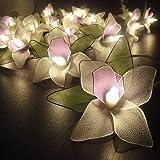 Amazon Com Natural Cream Flower Leaf String Lights 9 Foot
