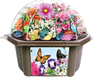 TOYS BY NATURE Grow Your Own Butterfly Garden - Delightful Sweet Smelling Flowers - Includes Everything Needed to Create Your Beautiful Butterfly Biosphere