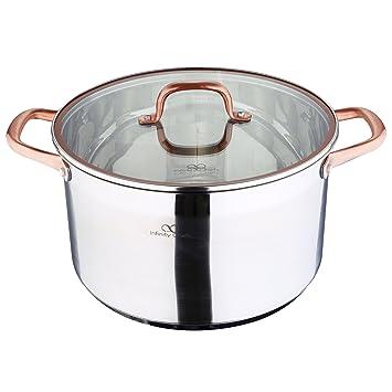 Bergner Infinity Chef Olla de Inducción con Tapa de Vidrio 9.5 l, Acero Inoxidable, Bronce, 28 cm: Amazon.es: Hogar