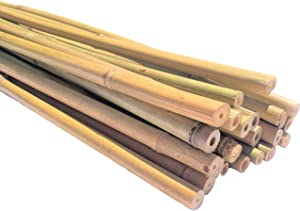 Dlh Western Natural Bamboo Poles, Eco-Friendly Plant Support Garden Stakes 6ft Long, Diameter of 1/2