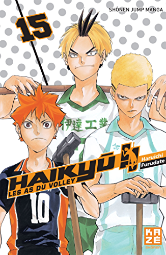 Haikyu !!   Les As du volley T15