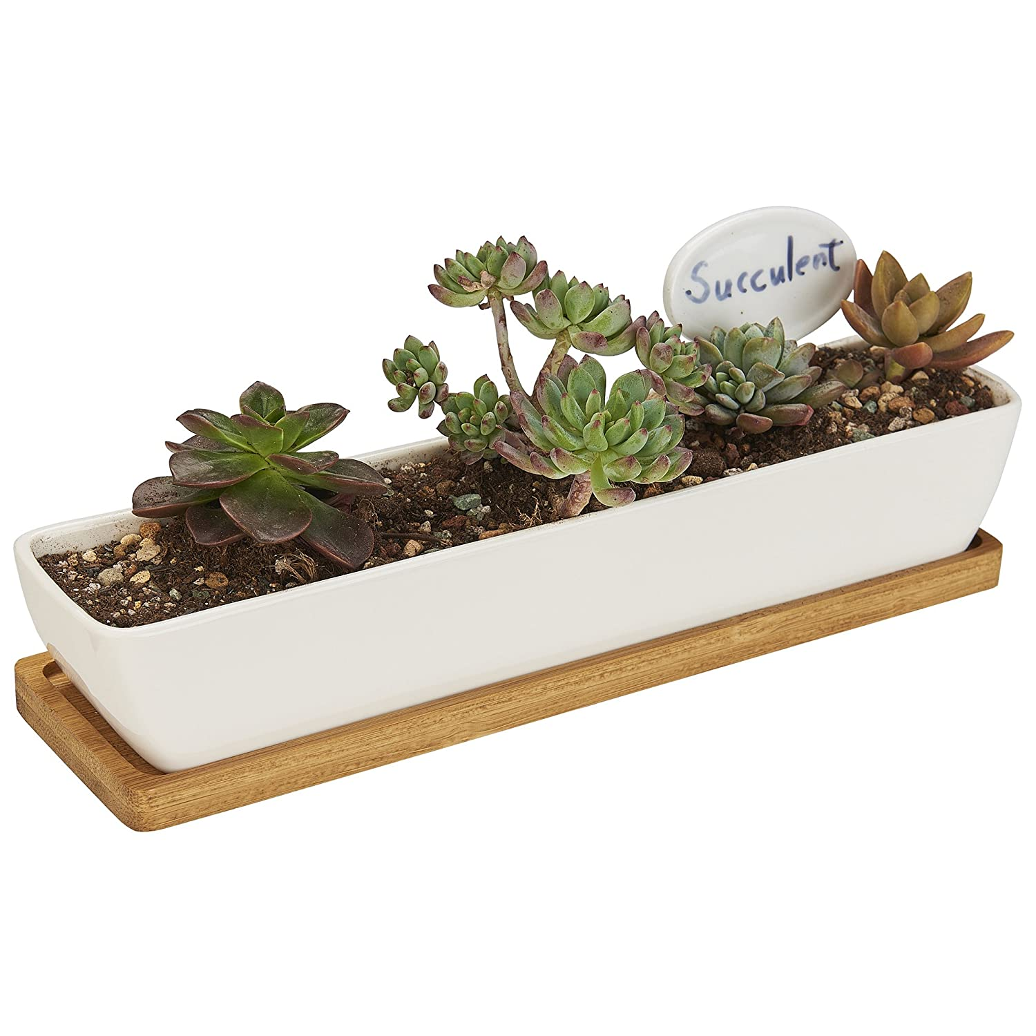 FLOWERPLUS Planter Pot Indoor, 11 Inch Long Rectangle White Ceramic Small Succulent Cactus Flower Plant Container with Bamboo Base and Little Plants Sign for Indoors Outdoor Home Garden Kitchen Decor