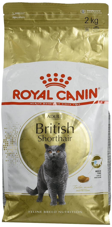 85g Helpful New Royal Canin Adult British Shorthair In Gravy Cat Supplies