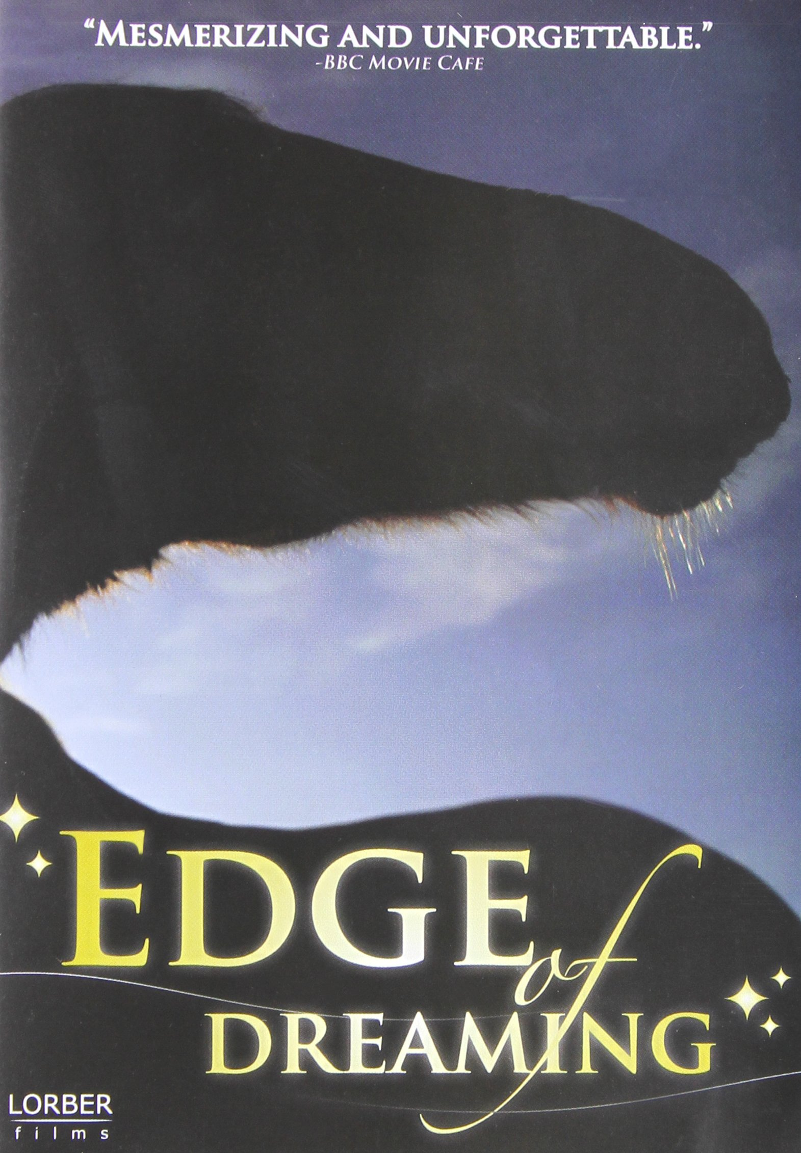 DVD : Amy Hardie - The Edge Of Dreaming (DVD)