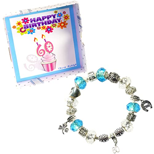d5a6054f6 Image Unavailable. Image not available for. Color: Charm Buddy 60th  Birthday Good Luck Lucky Blue Silver Pandora Style Bracelet With Charms ...