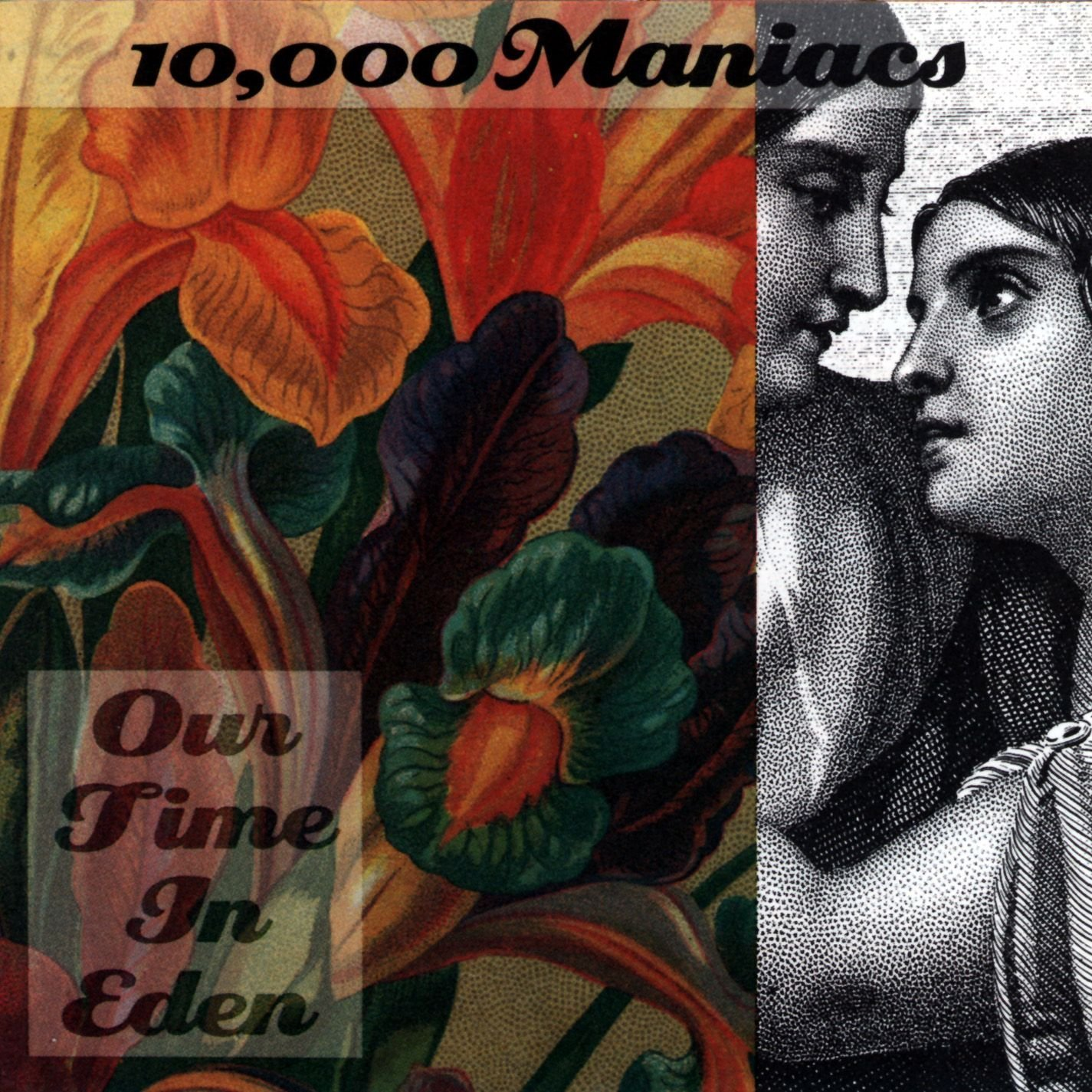 10 000 maniacs our time in eden amazon music mightylinksfo