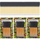 ONE250 Arrows Bolts for Pistol Crossbow 50-80 Lb Pounds - 36 Pack