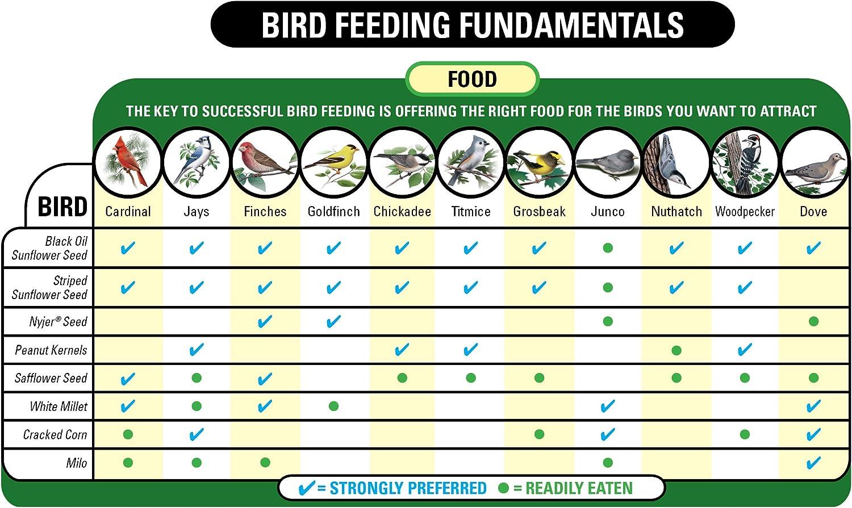 Wagner's 62004 Eastern Regional Blend Wild Bird Food, 20-Pound Bag : Wild Bird Birdseed : Garden & Outdoor