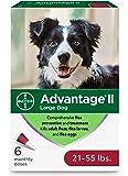 Advantage II Topical Flea Treatment for Large Dogs, 21 - 55 lbs
