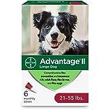 Advantage II Large Dog Flea Treatment, Flea Treatment for Large Dogs 21-55 Pounds