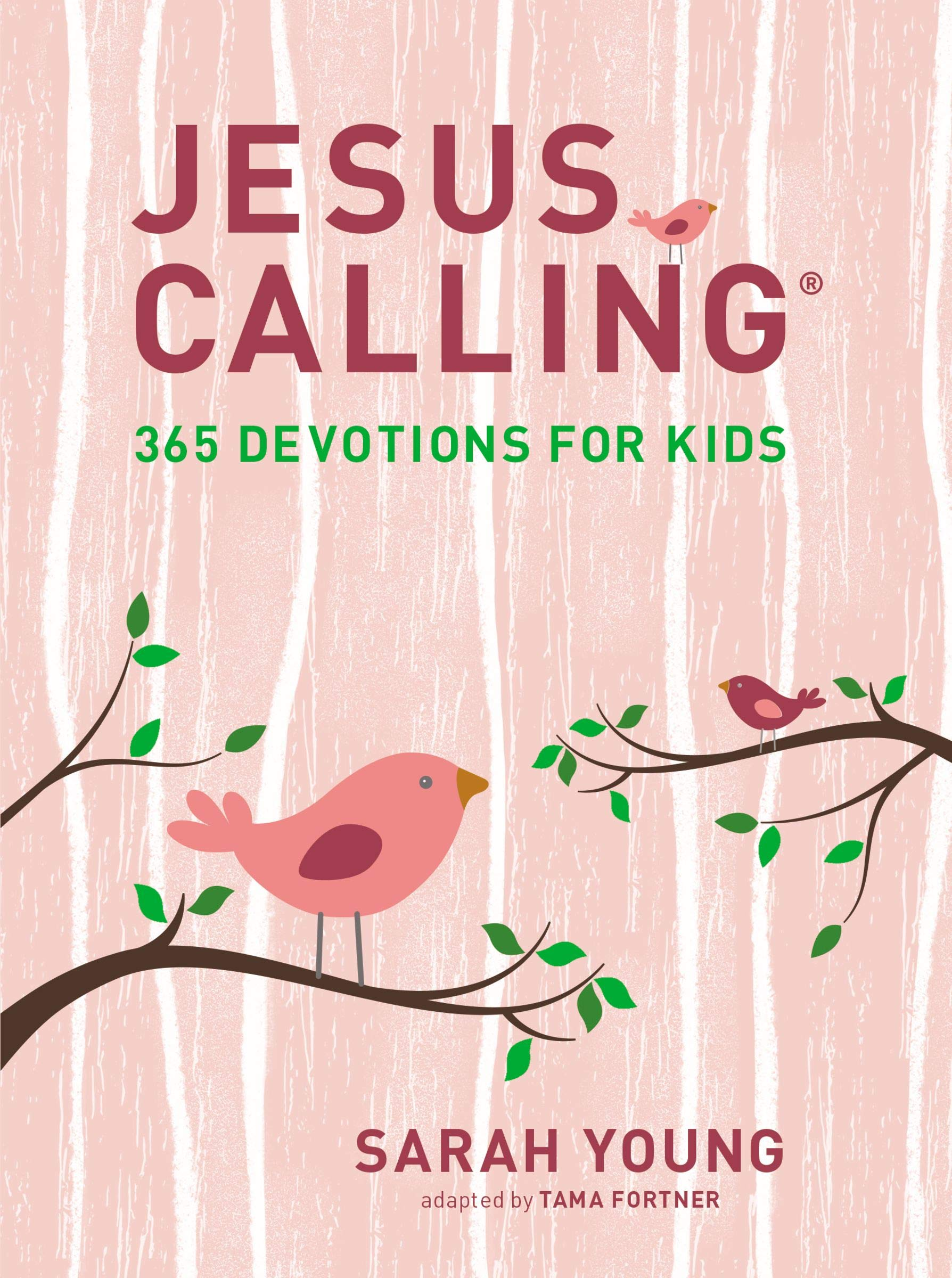 Jesus Calling 365 Devotions For Kids Girls Edition Young Sarah 9781400216765 Amazon Com Books