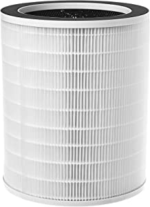 Compass Home Air Purifier Replacement Filter - H13 HEPA Filter Refill Compatible with Model DGZ9029G Large Room Air Purifier