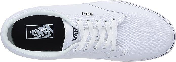 Vans VVOB186 M Winston Herren Sneakers