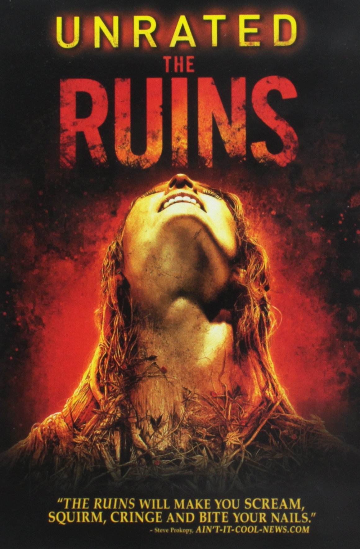 DVD : The Ruins (Unrated Version, Widescreen, Dolby, AC-3, )