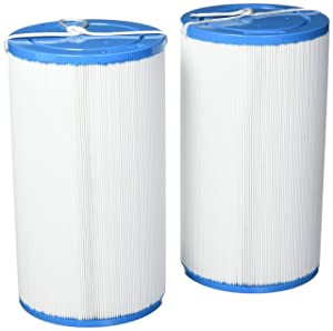 Smart Spa HSAK-4031-2 2 Pack-Hot Springs Freeflow Spa Replacement Filter-303279, White and Blue