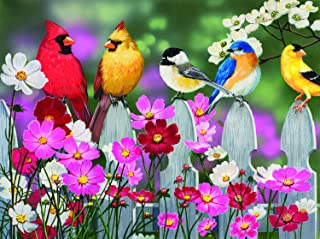 product image for SUNSOUT INC Songbirds and Cosmos 500 pc Jigsaw Puzzle