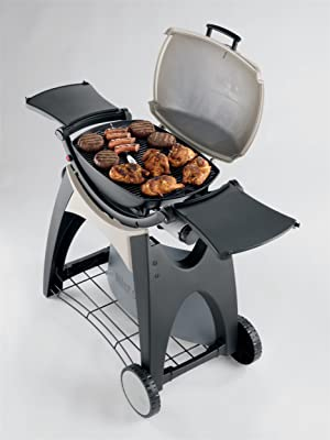 Weber 566002 Q 220 Portable 280-Square-Inch 12000-BTU Liquid-Propane Gas Grill review