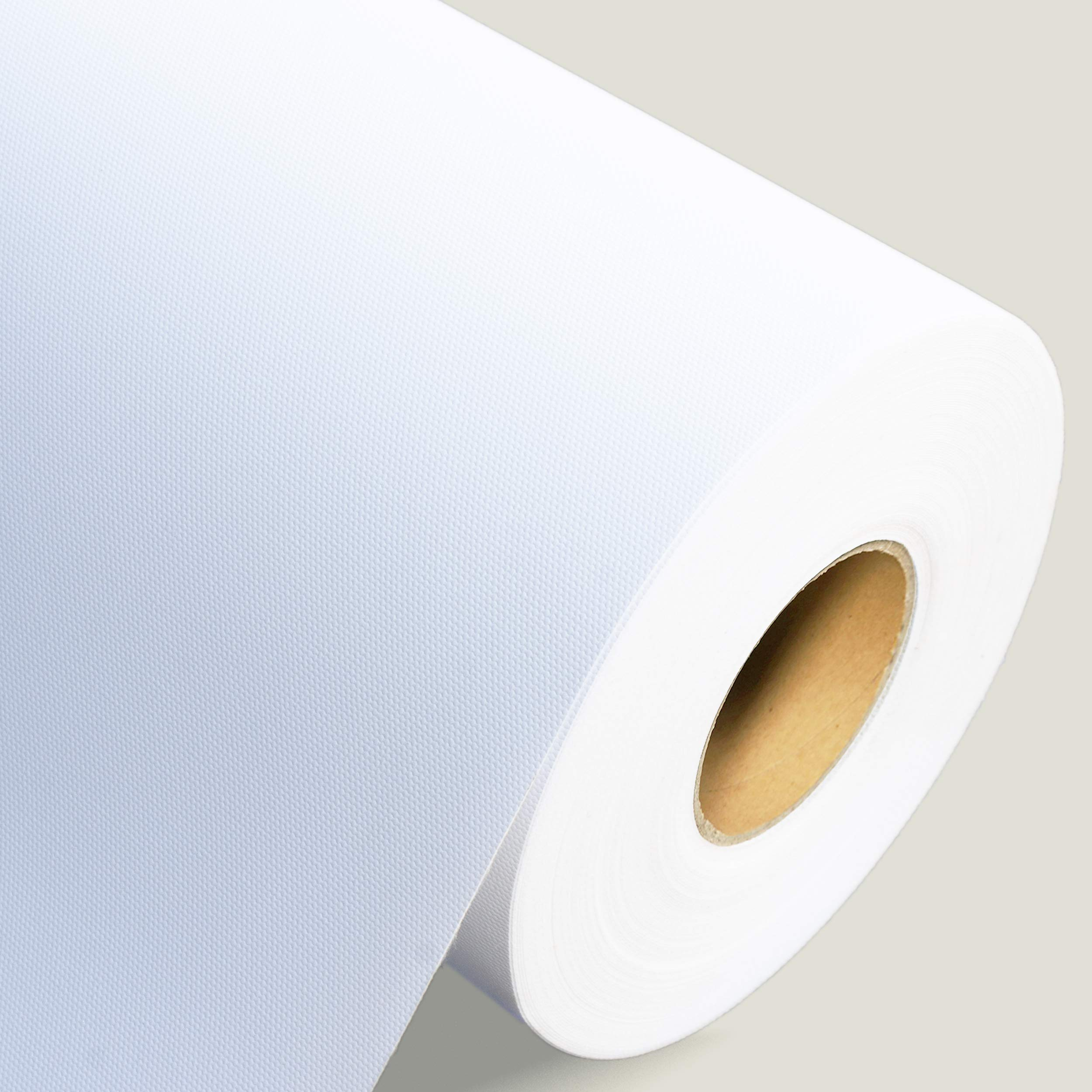 Professional Matte Canvas Roll for Epson Canon HP Inkjet Printer, 24 Inch x 100 Feet, Wide Format 290gsm Surface Polyester Thick Canvas by P&L ART.