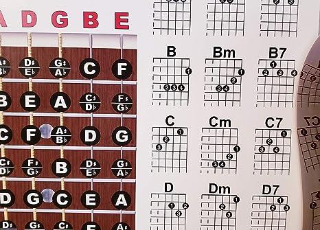 Guitarra Diapasón y Chord Chart Póster didáctico: Amazon.es ...