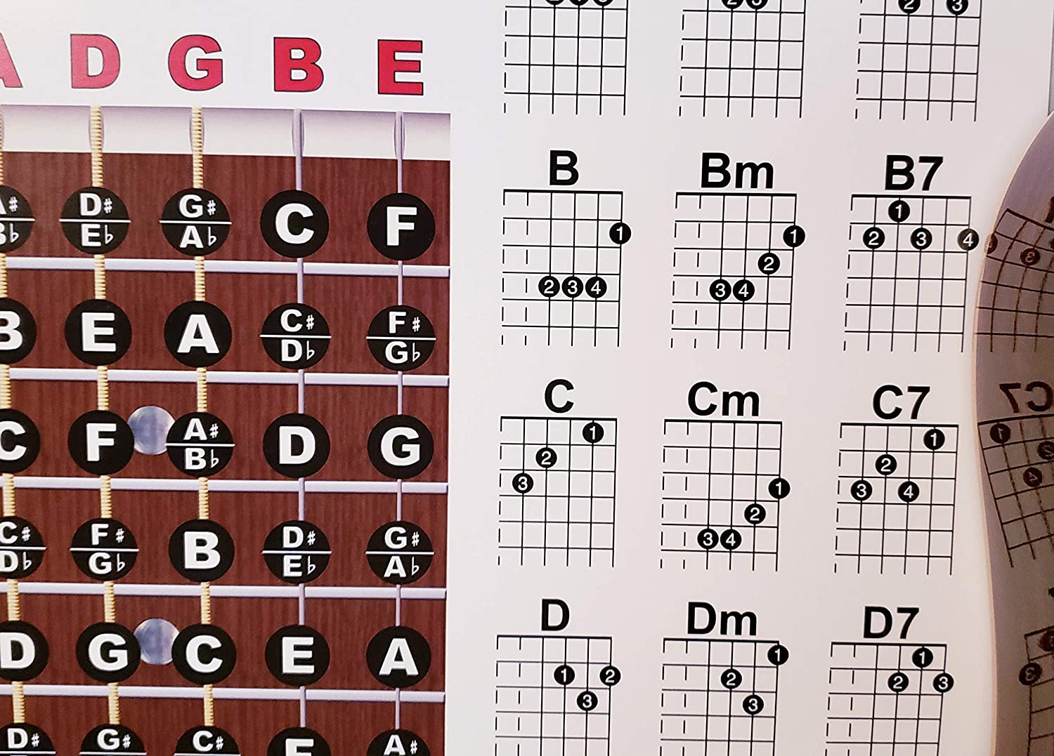 Amazon.com: Guitar Fretboard and Chord Chart Instructional Poster: Musical  Instruments