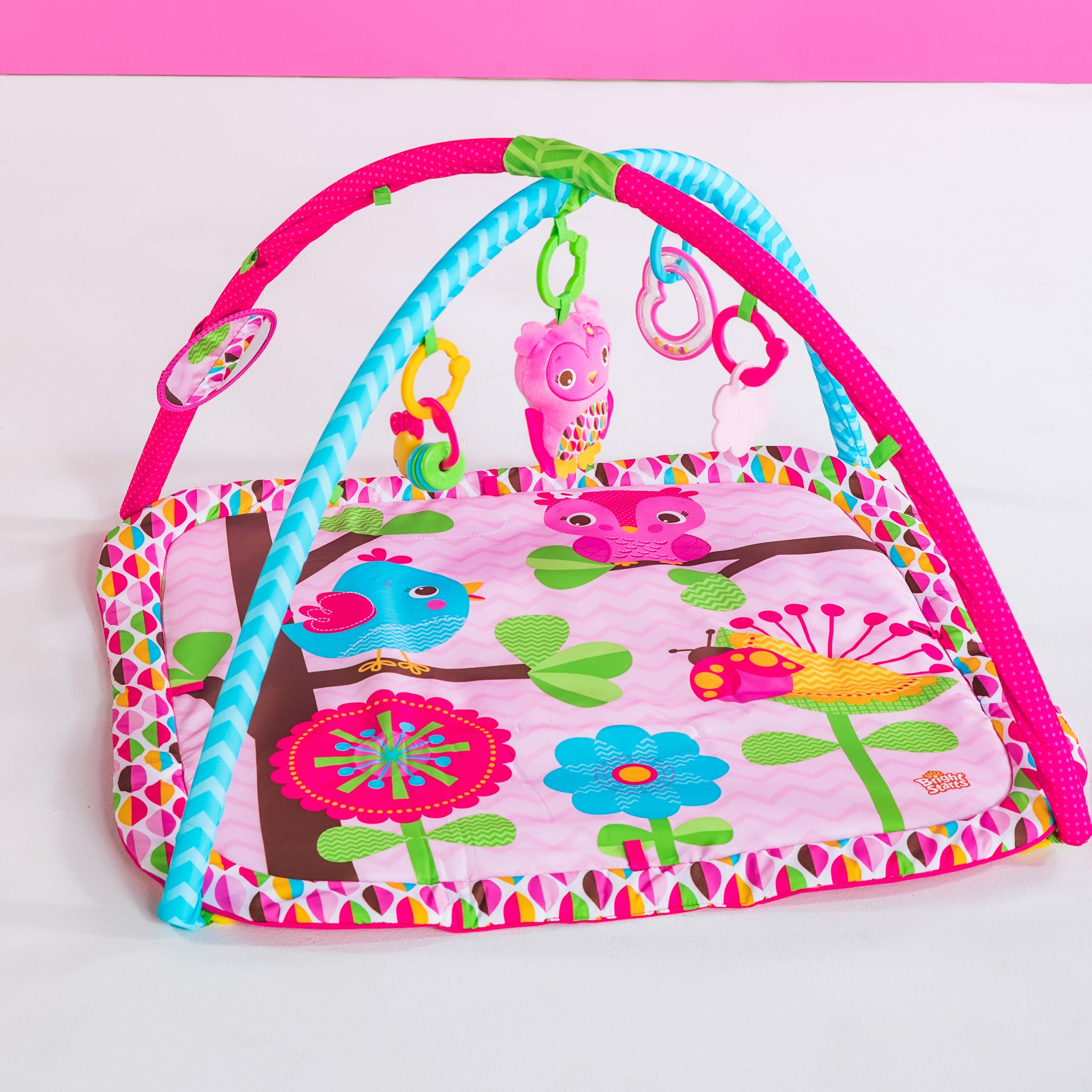 Bright Starts Charming Chirps Activity Gym, Pretty In Pink by Bright Starts (Image #3)