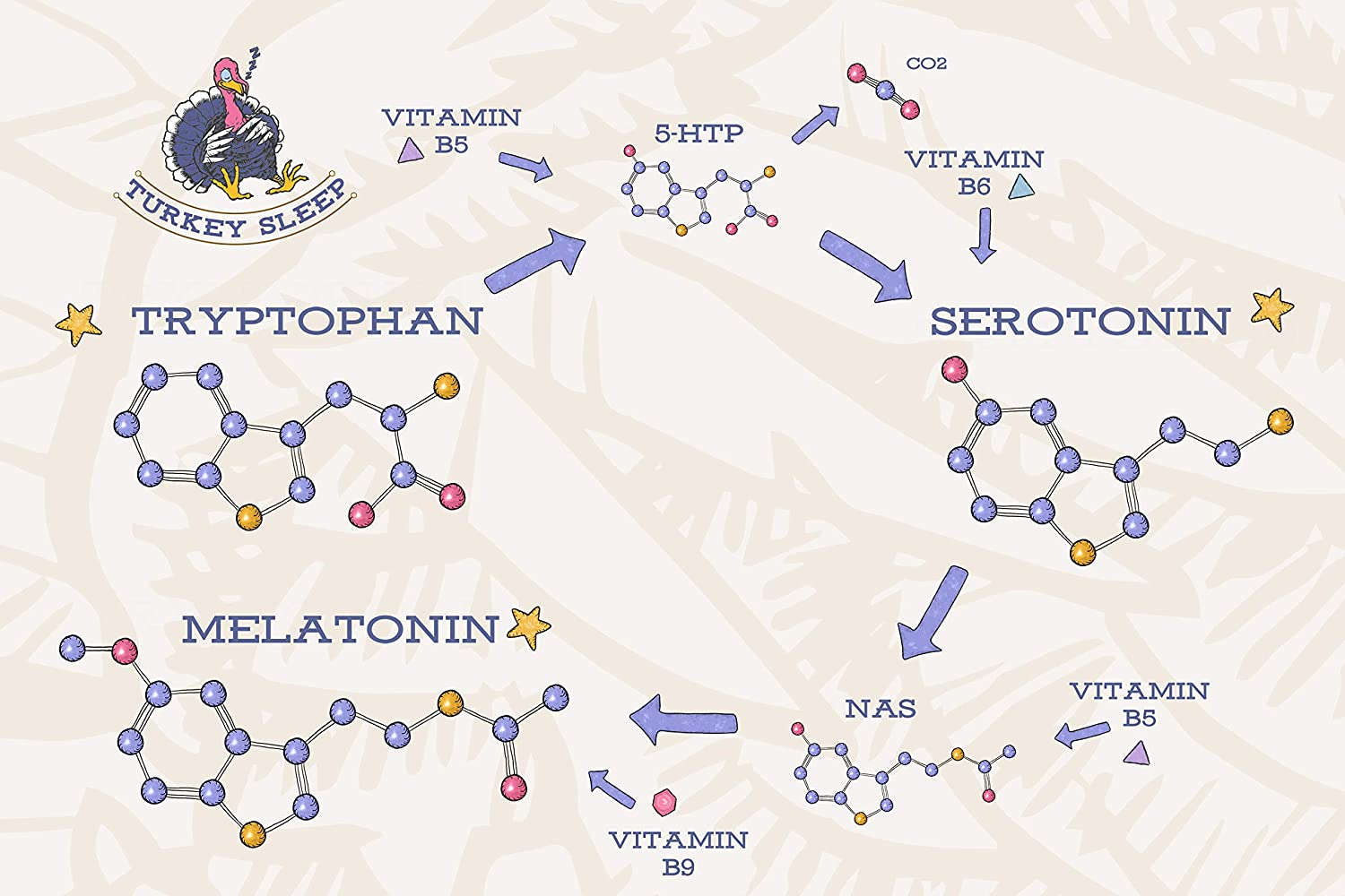 Amazon.com: Boost Serotonin and Melatonin Levels Naturally for DEEP Sleep! - Only Tryptophan Supplement with Vitamins B5 B6 B9 Folic Acid and Magnesium ...