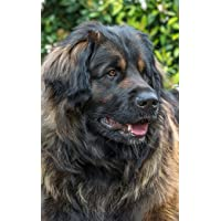 Image for Notebook: Leonberger Giant Dog Dogs Puppy Puppies Breed