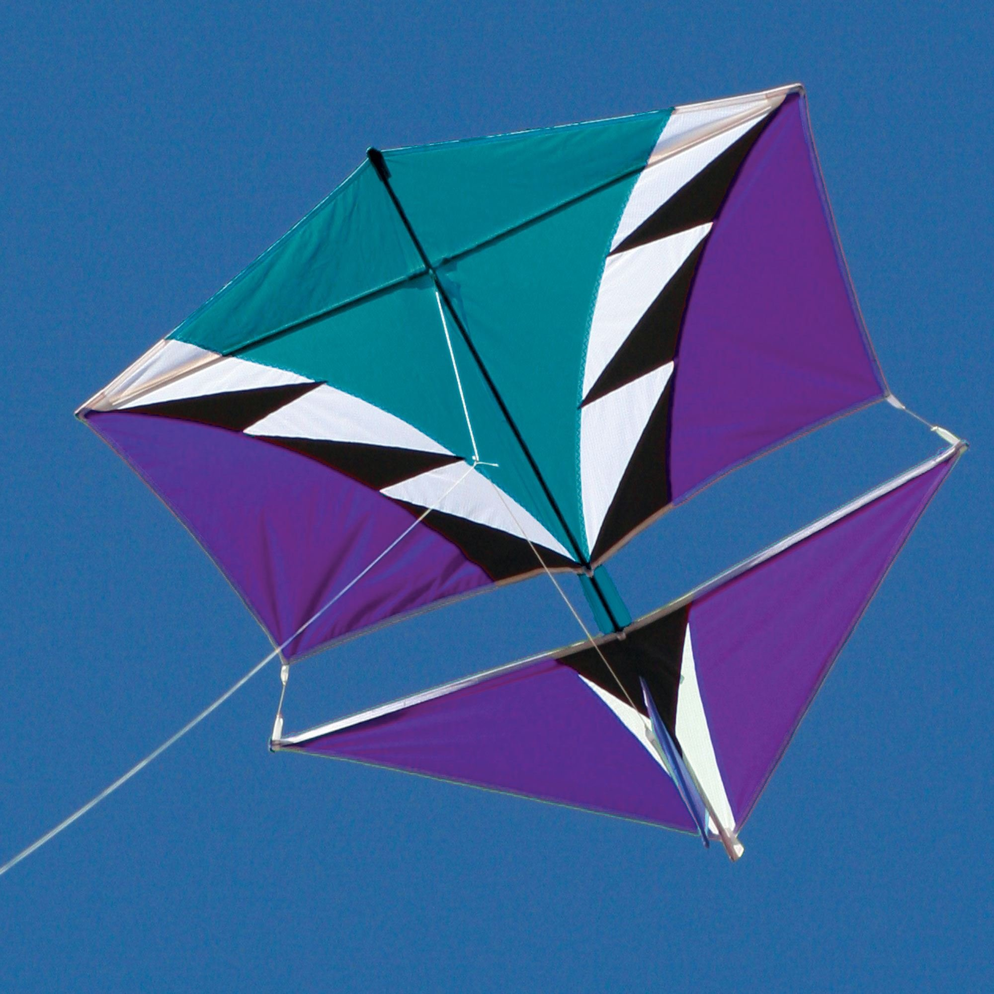 Into The Wind Vertical Visuals' Roller Kite