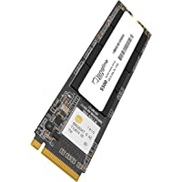 Longline 512GB NVMe M.2 SSD 2500MB/s 1700MB/s LNG2500/512GN