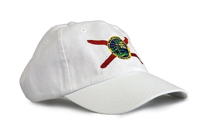 8ad4f2772c7 Amazon.com  Ann Arbor T-shirt Co. Florida State Flag Low Profile ...