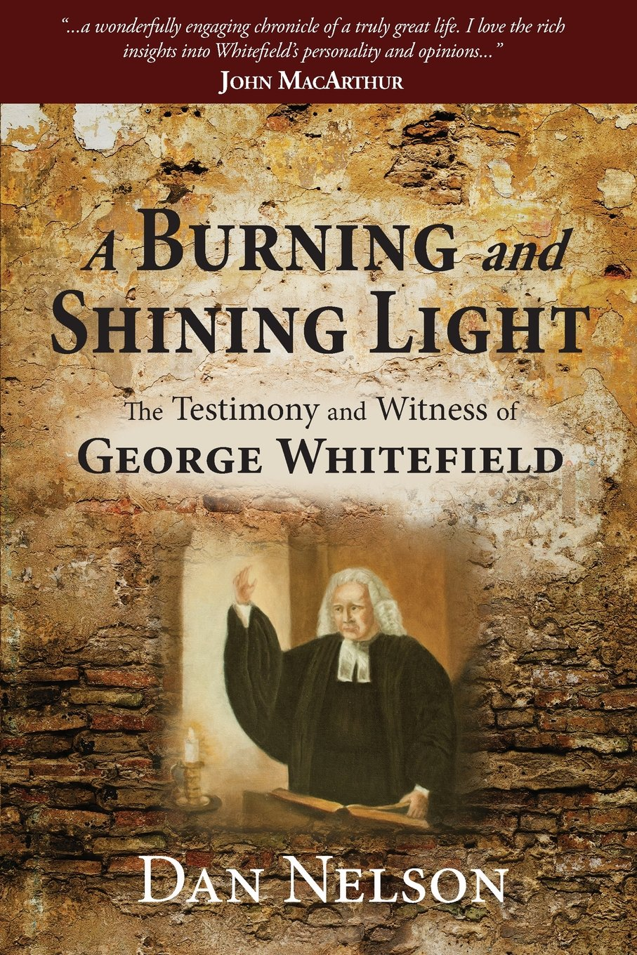 Download A Burning and Shining Light: The Testimony and Witness of George Whitefield pdf epub