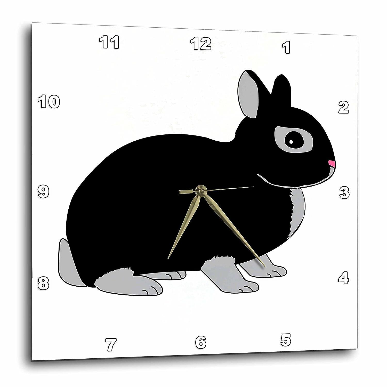 3dRose dpp/_6305/_1 Wall Clock 10 by 10-Inch Netherland Dwarf Rabbit Silver Marten Design