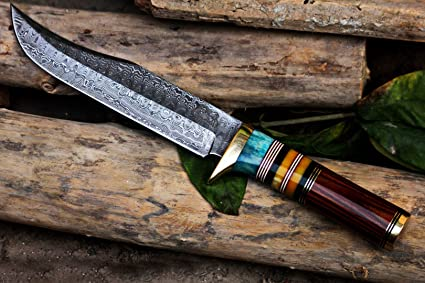 Amazon.com: bmk-105 Dragón cuchillo 12 pulgadas de largo 7 ...