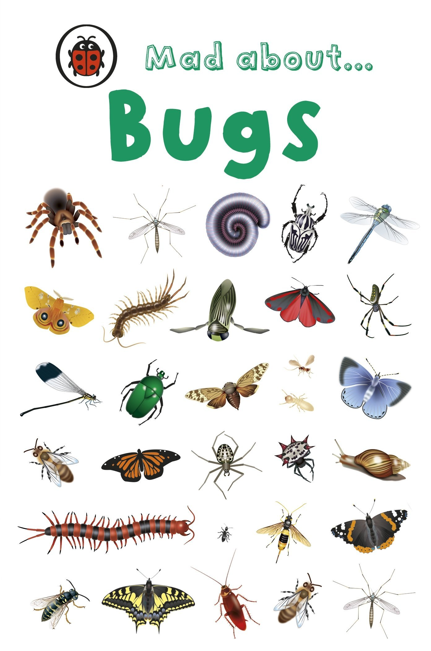 Download Ladybird Minis Mad About Bugs pdf epub